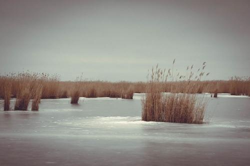 У беды на краю. Зимняя рыбалка в Кунашакском районе едва не стоила жизни жителям Челябинска